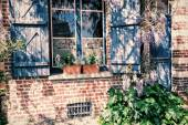 Old house window with blue shutters — Stock Photo