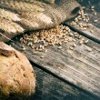 Fresh loaf of bread and wheat — Stock Photo #57296513