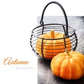 Autumn still-life with small pumpkins — Stock Photo