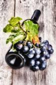 瓶红酒与新鲜葡萄 — 图库照片