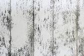 Old weathered wood background — Stock Photo