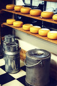 Cheese rounds and milk cans — Stock Photo