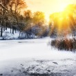 Spectacular sunset over winter forest lake — Stock Photo #59250431