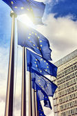 European Union flags — Stock Photo