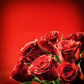 美しい赤いバラの花束 — ストック写真