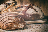 Selection of freshly baked bread in rustic setting — Photo