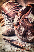 Selection of freshly baked bread — Photo