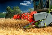 Combine harvester at wheat field — Stock Photo