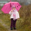 The little girl under an pink umbrella in the fall — Stock Photo #53872255