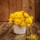 Beautiful bouquet of yellow chrysanthemums flowers in wicker ba — Stock Photo