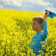 Young Boy with paper Plane against blue sky and Yellow Field Flo — Stock Photo #73037387