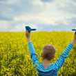 Young Boy with paper Plane against blue sky and Yellow Field Flo — Stock Photo #73039039