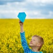 Young boy with paper airplane against blue sky — Stock Photo #73042109