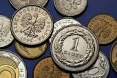 Coins of Poland — Stock Photo