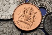Coat of arms on Malawian Coin — Stockfoto