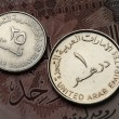United Arab Emirates Coins — Stock Photo #52659437