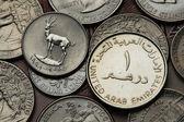 United Arab Emirates Coins — Foto de Stock