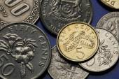 Coins of Singapore — Stock Photo