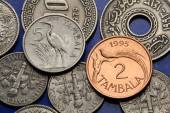 Coins of Malawi — Stock Photo
