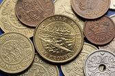 Coins of Denmark — Stock Photo