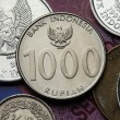 Постер, плакат: Coins of Indonesia