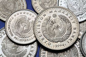 Coins of Uzbekistan — Stock Photo