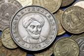 Coins of Kazakhstan  — Stockfoto