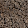 Cracked Dried Earth — Stock Photo #60334821
