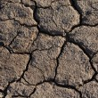 Cracked Dried Earth — Stock Photo #60536633