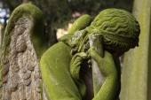 Mourning angel at the cemetery — Stock Photo