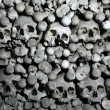 Human bones and skulls in Sedlec Ossuary near Kutna Hora. — Stock Photo #63558055