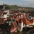 St Vitus Church over tiled roofs — Stock Photo #64145195