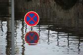 Floods in Usti nad Labem — Stock Photo