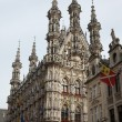 Gothic Town Hall in Leuven — Stock Photo #69896375