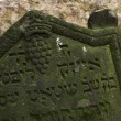 Old Jewish Cemetery in Prague — Stock Photo #70916023