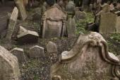 Starý židovský hřbitov v Praze — Stock fotografie