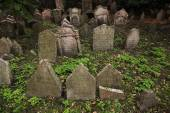 Abandoned tombstones at the Cemetery — Stock Photo