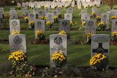 Commonwealth War Cemetery in Prague, Czech Republic. — Stock Photo