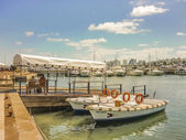 Sunny Morning at the Port of Punta del Este — Stock Photo
