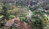 Aerial View of Punta del Este — Stok fotoğraf
