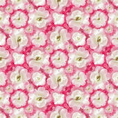 White Roses Floral Pattern — Stok fotoğraf