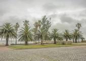Parque da costa de Montevidéu — Fotografia Stock