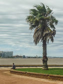 Windy Day at Montevideo Boardwalk — Stock Photo
