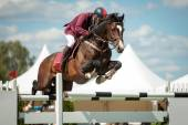 Equestrian sports — Stock Photo
