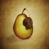 Pear with wilted leaves — Stock Photo
