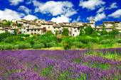 Scenery of Provence - view of Saignon village and lavander field — ストック写真