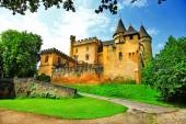 Castles of France - Puymartin (Dordogne department) — Foto de Stock