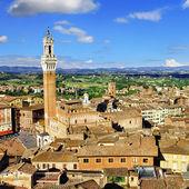 Siena, Tuscany, view of piazza del campo — Stock Photo