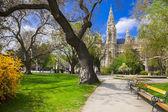 Beautiful parc near city hall in Vienna, Austria — Stockfoto