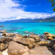 Постер, плакат: Incredible nature of Seychelles islands
